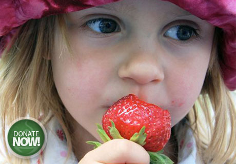 Young girl eating strawberry - Project Topeka Community Food Drive